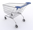Shopping Cart (Angle 2)