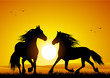 roleta: Wild horse at sunset