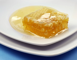 honeycomb and honey on white plate