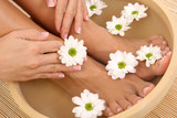 beautiful legs and hands with perfect french pedicure poster