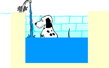 ILLUSTRATION,DOG,IN,BATHROOM