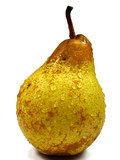 common pear poster