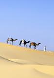 CAMEL caravan poster