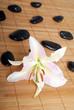Steine mit Lilienblüte