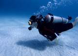 Diver over white sand in the Caribbean Sea poster