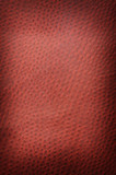 Red spotted leather background close up poster