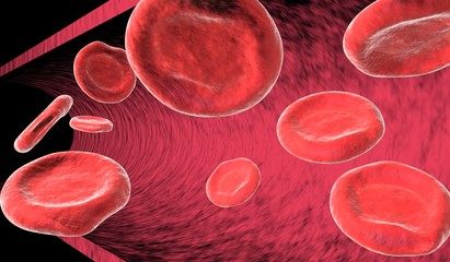 9 red blood cells (erythrocytes) floating by in artery.