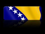 pulsante bosnia and herzegovina  poster