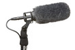 Microphone used in TV and film production