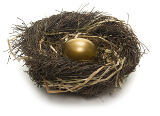 Golden egg inside a nest on white background