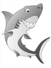 Grauer Weißhai