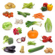 vegetable collection on white