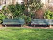 Bancs en bois devant une pelouse dans un jardin à Paris.