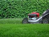 lawn care - Fine Art prints