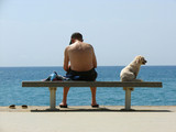 man with a dog on quay of the mediterranean sea poster