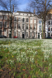 Snowdrops on a lawn in central The Hague - Lange Voorhout poster