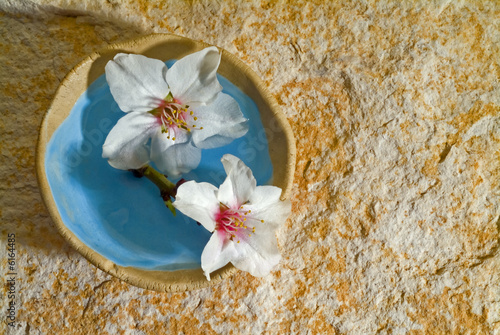 almond flowers in a small bowl on stone background
