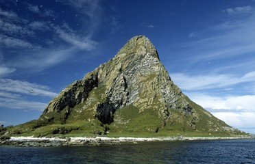 island rock, bird island in northern Norway