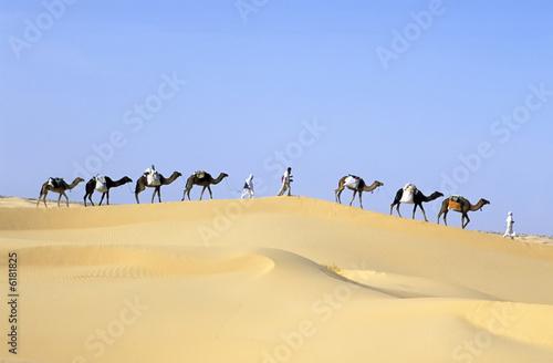 CAMEL caravan - 6181825