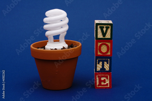 Light bulb in plant pot with vote