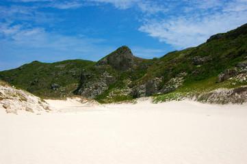 Sunny dune
