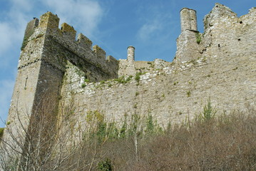 Curtain wall: a castle wall with tower - ruins