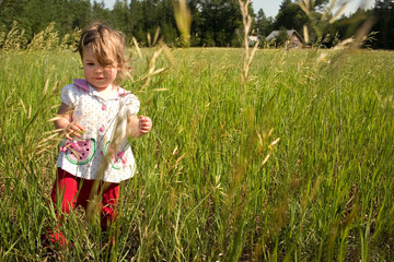 a little girl walking in a field of tall grass
