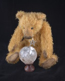 Psychic Teddy Bear