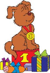 Puppy champion