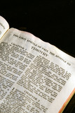 first epistle of paul the apostle to timothy  new testament poster