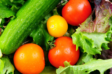 Assorted fresh vegetables - tomatoes, cucumber, green lettuce