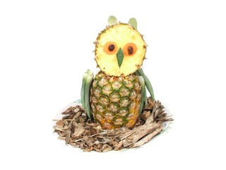 An Owl made from a Pineapple.
