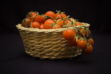 Pachino's tomato