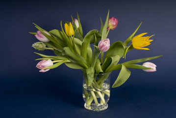bunch of tulips in vase