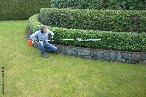 poster of hedge trimming