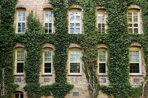 Leinwanddruck Bild Ivy around windows of Princeton University lecture hall