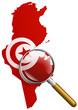 Etude de la Tunisie (drapeau)