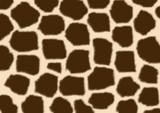Texture - a fluffy skin of a giraffe poster