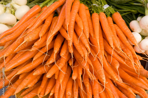 Bunch of Orange Organic Carrots..