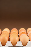 24 eggs in tray over brown background