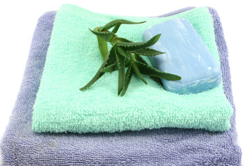 soap and aloe vera