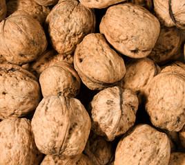 many of walnuts - background consist lot of walnuts