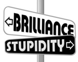 brilliance - stupidity  poster