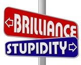 brilliance - stupidity  1 poster