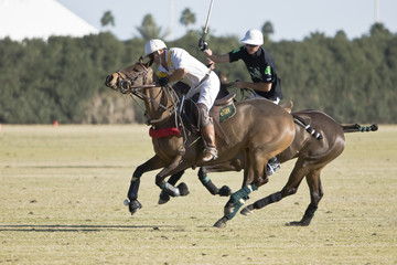 Polo players on opposing teams atop the ball