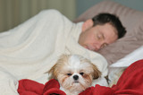 Sleepy dog next to her owner who is sleeping  poster