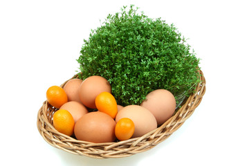 Eggs, kumquat fruit, eggs and cress in a basket. Easter! Spring!
