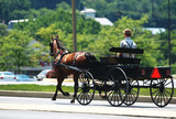 An Amish horse and buggy  traveling down a Pennsylvania street.
