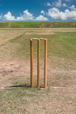 full length grass cricket pitch in summer wickets and bails  poster