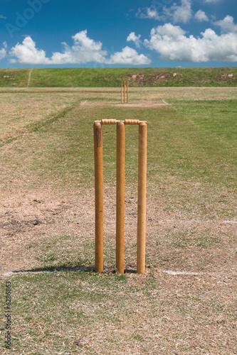 Cricket Pitch Size Diagram